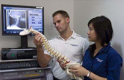 Chiropractic Department.