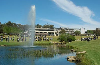 Macquarie University campus grounds.