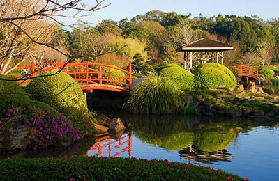 Japanese Gardens at Toowoomba Campus.